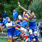 Premier division rugby union game played between Northern United  (Norths) v Tawa  at  Lyndhurst Park, Tawa  New Zealand, on 15 April 2017.  Game won 24-19 by Tawa.