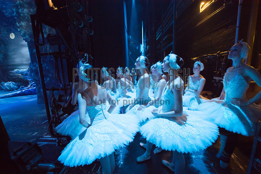 English National Ballet Swan Lake at The Coliseum Theatre, London on January 18 2015. Photo: Arnaud Stephenson