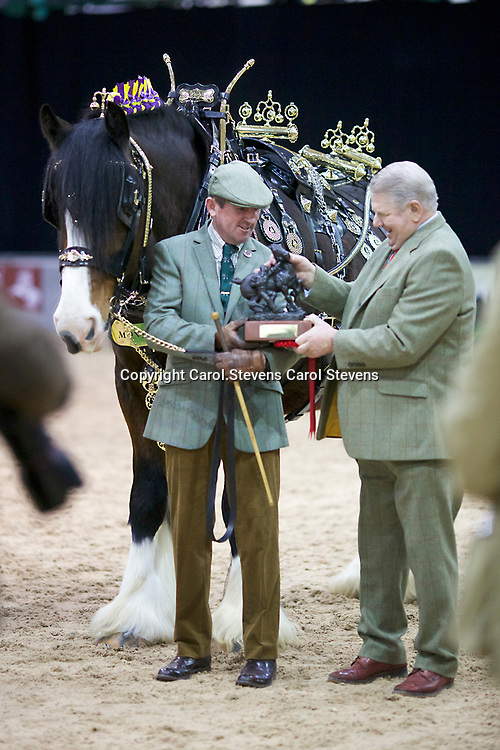 Mike Bottomer and FIFIELD ADMIRAL<br /> Winner  Traditional Harness Class<br /> Winner  Best Dressed Groom of the Show