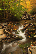 Cascade in Great Smoky Mountains National Park