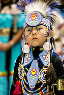 Gathering of Nations Pow Wow, Chippewa Cree, boy, kids, Traditional Dancer, Albuquerque, New Mexico
