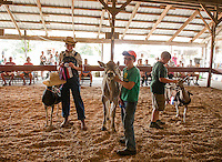 "Caitlynn Hammond with her Alpine Nubian Cross ""Amy"", Jacob Downs with his Brown Swiss ""Swiss Miss"" and Hayden Gardner with his Toggenburg Goat ""Flash"" have a little fun in the Costume Class on Sunday morning at the 4H Fair at the Belmont Fairgrounds.  (Karen Bobotas/for the Laconia Daily Sun)"