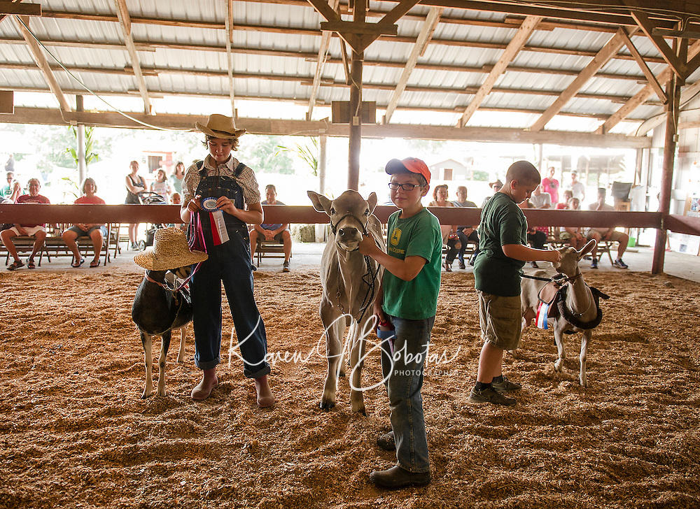 """Caitlynn Hammond with her Alpine Nubian Cross """"Amy"""", Jacob Downs with his Brown Swiss """"Swiss Miss"""" and Hayden Gardner with his Toggenburg Goat """"Flash"""" have a little fun in the Costume Class on Sunday morning at the 4H Fair at the Belmont Fairgrounds.  (Karen Bobotas/for the Laconia Daily Sun)"""