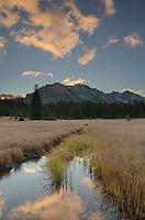 Kangaroo Ridge at dawn from Washington Pass Meadows, North Cascades Washington