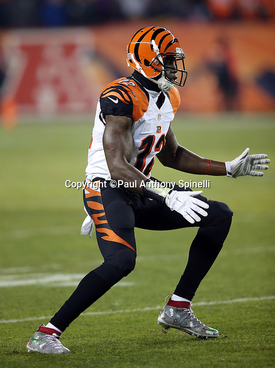 Cincinnati Bengals wide receiver Mohamed Sanu (12) makes a move as he goes out for a pass during the 2015 NFL week 16 regular season football game against the Denver Broncos on Monday, Dec. 28, 2015 in Denver. The Broncos won the game in overtime 20-17. (©Paul Anthony Spinelli)