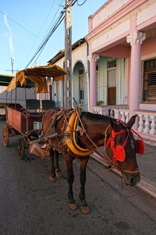 Coche de caballos in Limonar, Matanzas Province, Cuba.