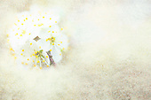 Flower art - Iridescent greenery