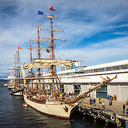 Europa (front), Oosterschelde and Lord Nelson (rear), Tall Ships Festival 2013, Hobart, Tasmania, Australia
