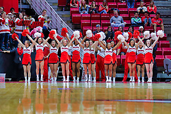 NORMAL, IL - November 03: Redbird Cheerleaders during a college basketball game between the ISU Redbirds  and the Augustana Vikings on November 03 2018 at Redbird Arena in Normal, IL. (Photo by Alan Look)