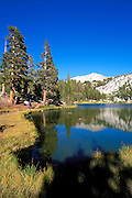 Backpacker hiking along the shore of Young Lake, Tuolumne Meadows area, Yosemite National Park, California