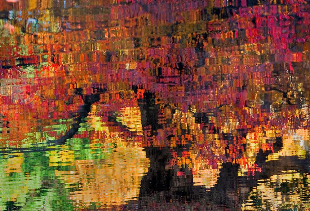 Nomahegan Park Fall Reflection
