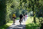 Radler im Naturschutzgebiet Eriskircher Ried, Bodensee, Baden-Württemberg, Deutschland