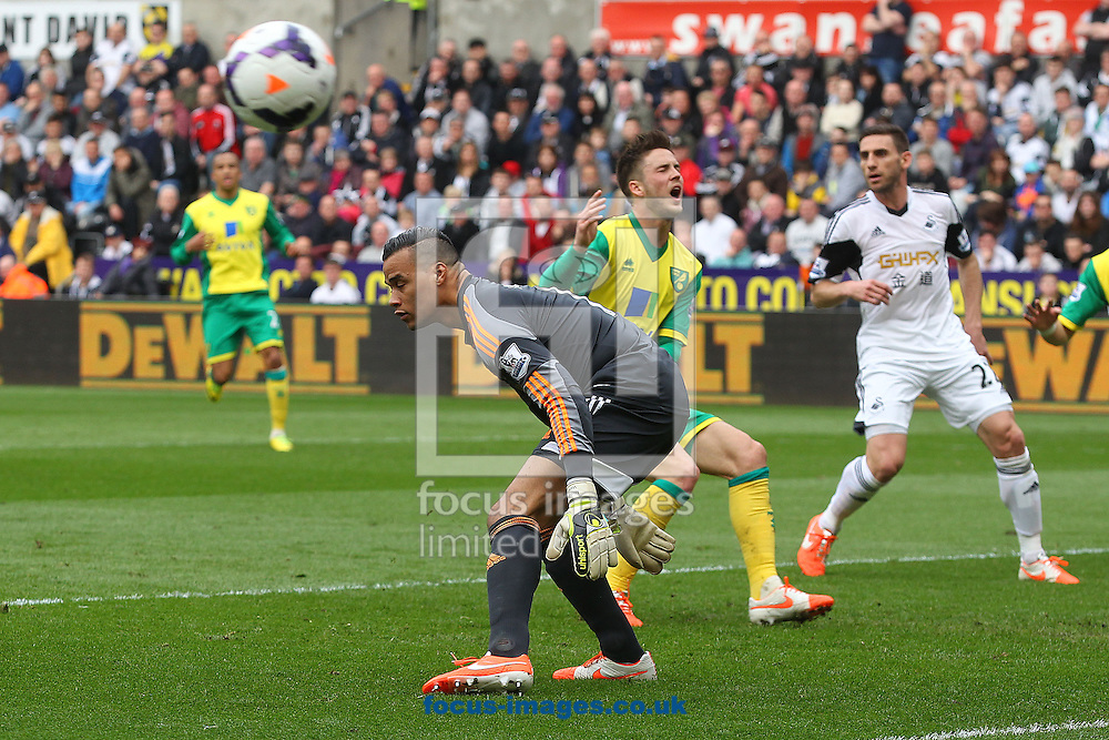 Ricky Van Wolfswinkel of Norwich rues a missed chance during the Barclays Premier League match at the Liberty Stadium, Swansea<br /> Picture by Paul Chesterton/Focus Images Ltd +44 7904 640267<br /> 29/03/2014