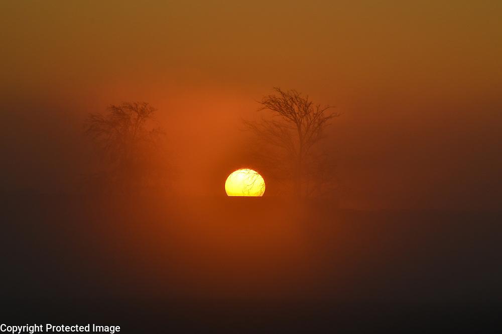 Beautiful sunrise through the fog in Plano, TX