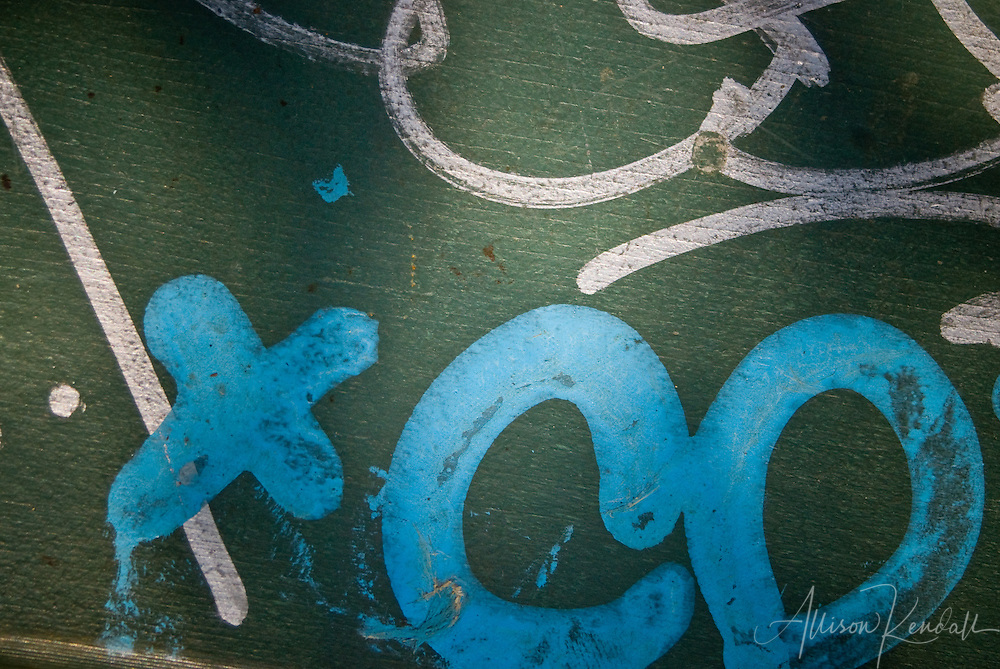 Detail of graffiti, blue and white letters on green, afternoon light