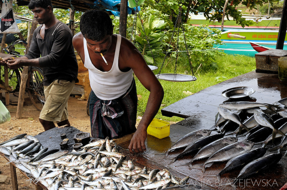 Sri Lanka, Galle. Man selling fishes.