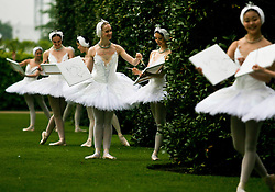 © Licensed to London News Pictures. 22/05/2012. London, UK.Ballerinas from The English National Ballet poses in the grounds of  Kensington Palace. Celebrities including Ronnie Wood, Pixie Lott, Tamara Rojo, Sam Taylor-Wood, Kimberley Walsh, Emily Bruni, Flawless and Lulu Guiness are creating Swan Lake inspired pieces of artwork for the ballet to auction at The Summer Party 2012, the company's annual fundraising party, on June 27th.  Photo credit : Thomas Campean/LNP