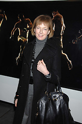 JULIA PEYTON-JONES at a private view of Octagan a showcase of work of photographer Kevin Lynch featuring the stars of the Ultimate Fighter Championship held at Hamiltons gallery, Mayfair, London on 17th January 2008.<br /><br />NON EXCLUSIVE - WORLD RIGHTS