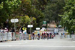 The final sprint on Stage 1 of 2020 Santos Women's Tour Down Under, a 116.3 km road race from Hahndorf to Macclesfield, Australia on January 16, 2020. Photo by Sean Robinson/velofocus.com