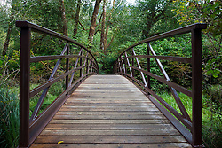 Hiking bridge, Lake Quinault, near Olympic National Park, Washington, United States of America