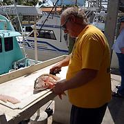 Vakantie Miami Amerika, vissersboten en fileren en schoonmaken van vis voeren in de haven van Key Largo Florida