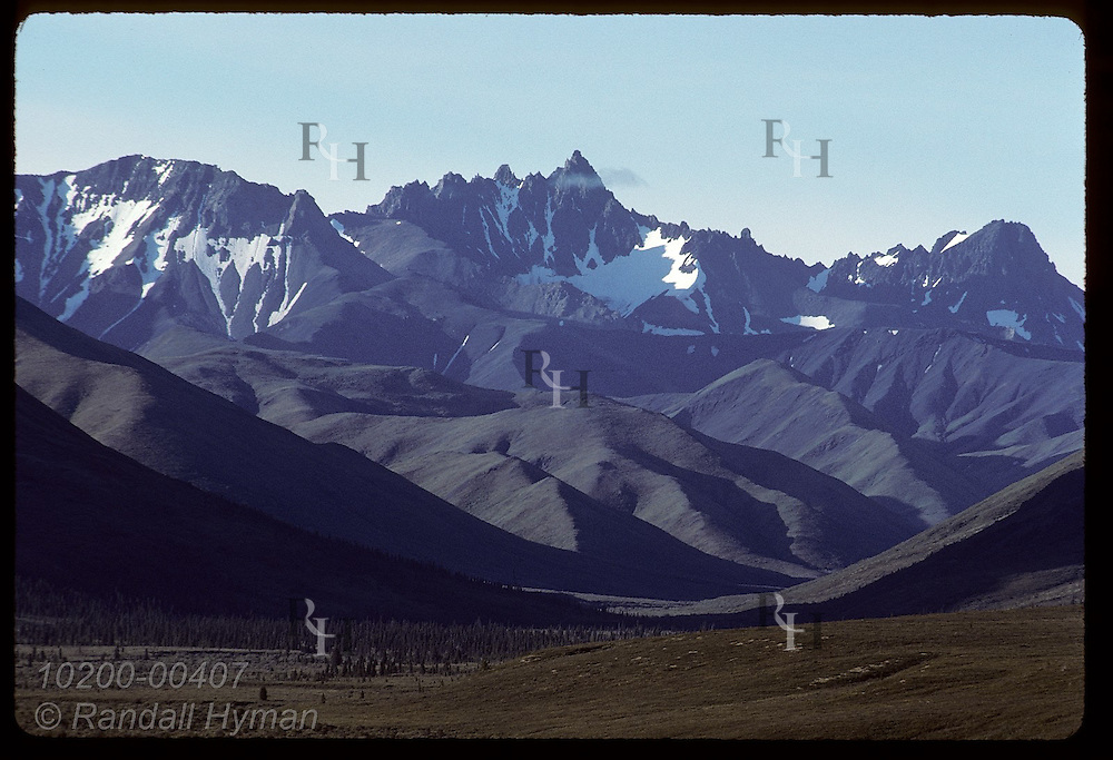 Alaska Range towers above forest and tundra on a sunny August day in Denali National Park. Alaska