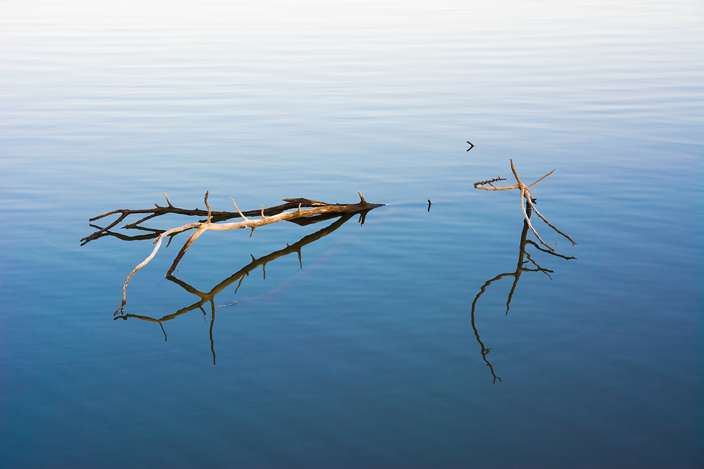 A simple forgotten branch in the reflecting water.<br /> <br /> Camera <br /> NIKON D7100<br /> Lens <br /> 17.0-50.0 mm f/2.8<br /> Focal Length <br /> 46<br /> Shutter Speed <br /> 1/80<br /> Aperture <br /> 5.6<br /> ISO <br /> 200