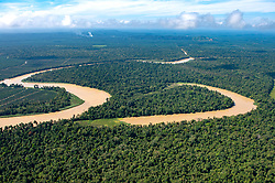 Deforestation due to plant palm oil plantations are seen along the Kinabatangan River, on August 5, 2019 near Sandakan city, State of Sabah, North of Borneo Island, Malaysia. Palm oil plantations are cutting down primary and secondary forests vital as habitat for wildlife including the critically endangered Bornean and Sumatran orangutans. Photo by Emy/ABACAPRESS.COM