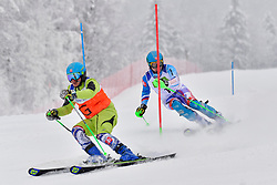 KRAKO Jakub Guide: BROZMAN Branislav, B2, SVK, Men's Giant Slalom at the WPAS_2019 Alpine Skiing World Championships, Kranjska Gora, Slovenia
