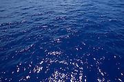 Blue ocean<br />