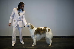 © London News Pictures. 07/03/2013. Birmingham, UK. Daniel Foran with his Borzoi dog called Lynx on day one of Crufts at the Birmingham NEC Arena on March, 07, 2013 in Birmingham, England.  Crufts, which is the largest annual dog show in the world, hosts over 20,000 dogs and owners who compete in a variety of categories. Photo credit : Ben Cawthra/LNP