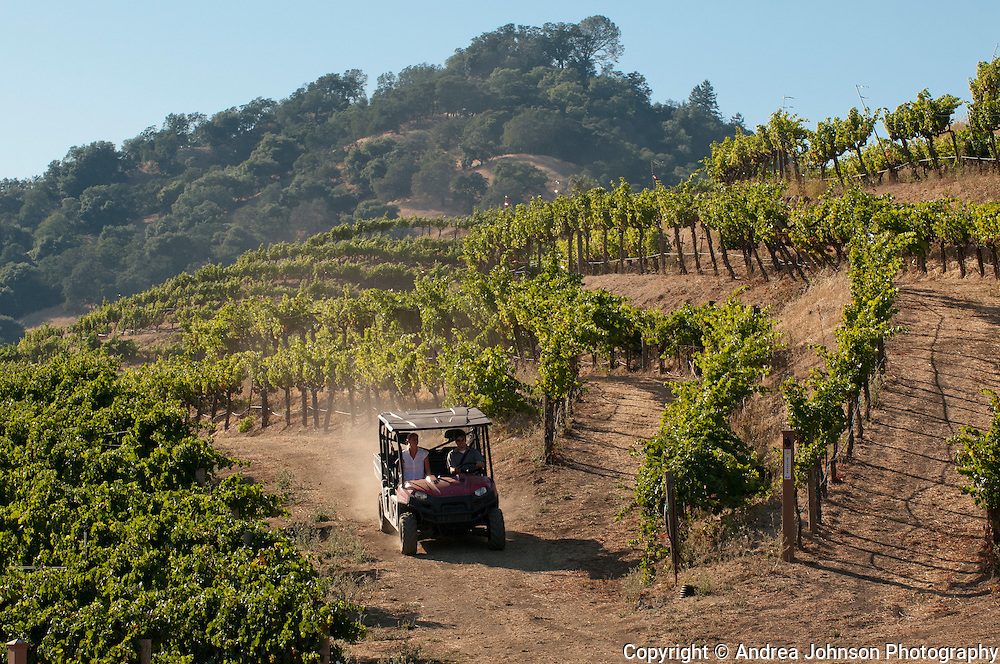 Private tours in 4wd buggy around Somerston Vineyard, Napa, California