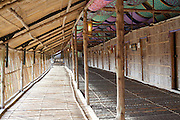 Sabah Tea Longhouse adapted from the Rungus Longhouse design, Ranau