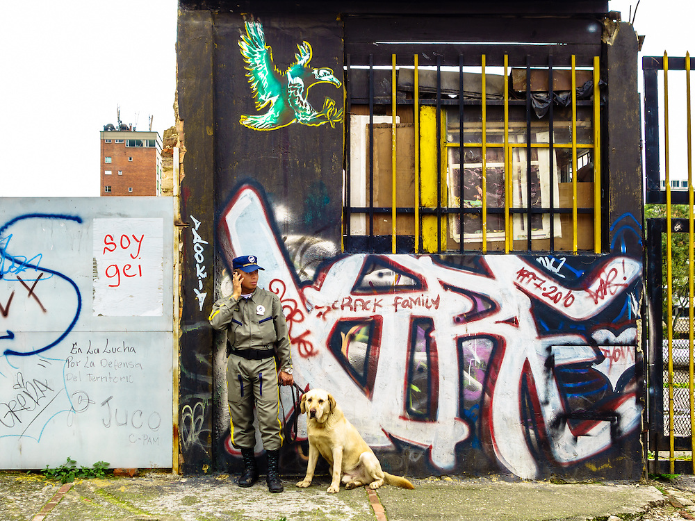 Security guard and dog