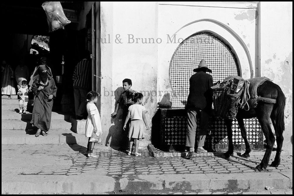 Maroc. Fès. Les souks de Fès el Bali. La Medina // Morocco. Fes (Fez). Souk of the old Medina.