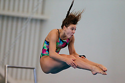 Alicia Blagg from City of Leeds Diving Club competes during the Womens 3m Springboard Preliminary - Mandatory byline: Rogan Thomson/JMP - 24/01/2016 - DIVING - Southend Swimming & Diving Centre - Southend-on-Sea, England - British National Diving Cup Day 3.