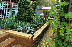 Raised vegetable bed with bean tripod. Wiggly trellis in the background