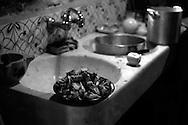 Fregadero. Preparando la palla, plato de alcachofas. Photo @ Antonio Nodar/Imagenes Libres