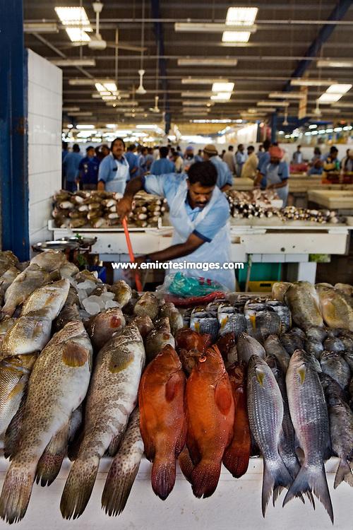 The Dubai Fish Market in Deira