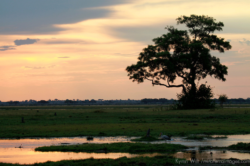 Africa, Botswana, Savute. Savute sunset in Chobe National Park.
