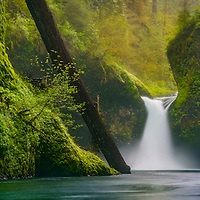 Punch Bowl Falls in the Columbia River Gorge near Hood River, Oregon.