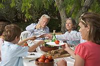 Three-generation family with children (6-11) dining in garden