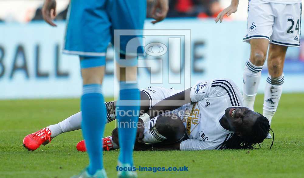 Bafetimbi Gomis of Swansea City during the Barclays Premier League match at the Liberty Stadium, Swansea<br /> Picture by Mike Griffiths/Focus Images Ltd +44 7766 223933<br /> 07/02/2015