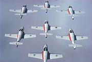 Canadian Snowbirds in perfect formation