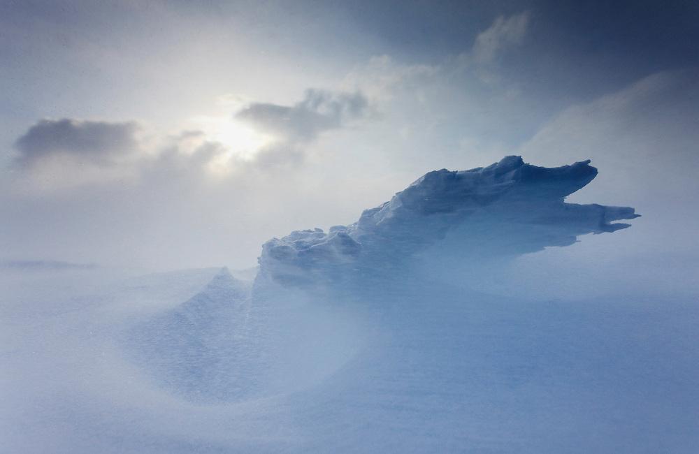 Agardh-bukta, Spitsbergen, Svalbard
