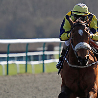 Red Somerset and K T O'Neill winning the 2.15 race
