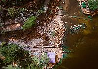 A section of inlet shorline shown in a drone image at Cerro de Oro, Guatemala on Lago de Atitlan on February 8, 2018.