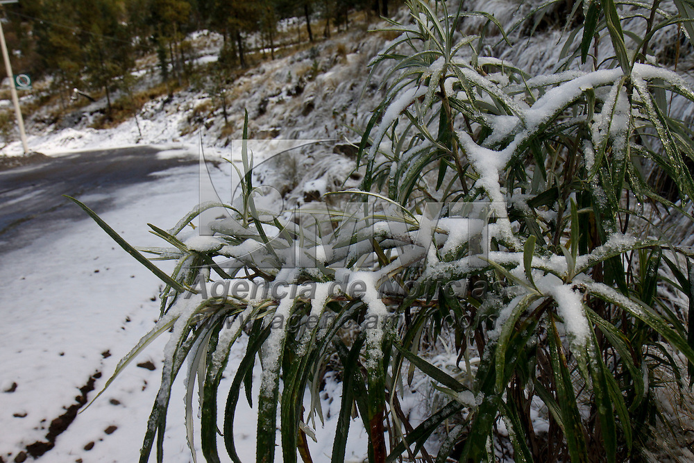 ZINACANTEPEC, México.- Una leve capa de nieve, de aproximadamente siete centímetros de espesor, se registro la mañana de este lunes en la zona alta del Nevado de Toluca. Agencia MVT / Crisanta Espinosa. (DIGITAL)