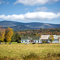 A fall farm setting under the mountains of northern NH.<br /> <br /> All Content is Copyright of Kathie Fife Photography. Downloading, copying and using images without permission is a violation of Copyright.