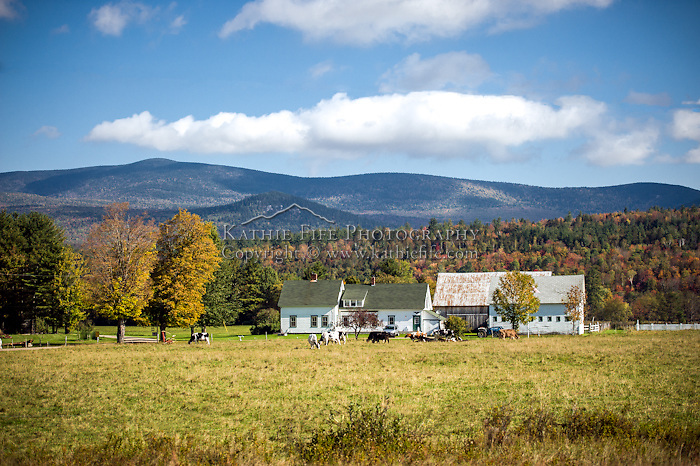A fall farm setting under the mountains of northern NH.<br />